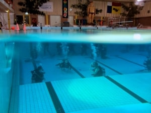 ABC Dive