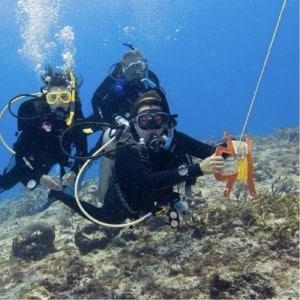PADI Drift Diver