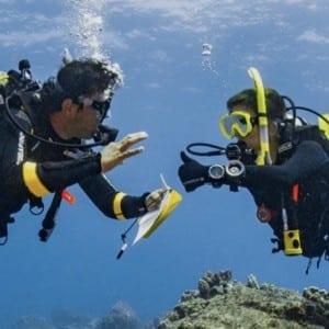 PADI Master Scuba Diver Instructor MSDT
