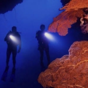 PADI Master Scuba Diver Instructor